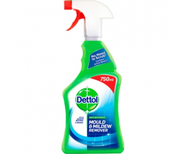 Dettol Mould & Mildew Remover - 750 ml